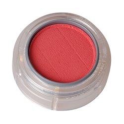 Rouge/Lidschatten, apricotpink 584