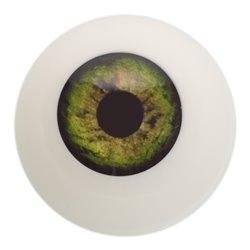 Kunststoffauge, grün